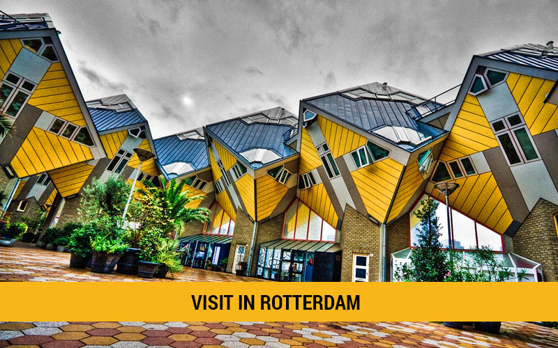 Places to visit in Rotterdam