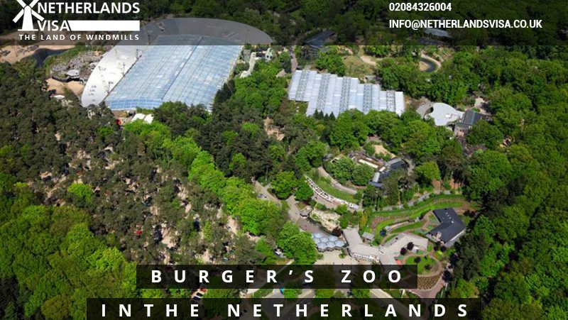 Burger's Zoo in the Netherlands